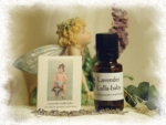 Lavender 'Lulla-Baby' - Product Image