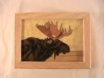 Marquetry Top Box  (5 X 4) - 'The Moose' - Product Image