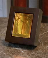 Woodlands Sunbeams Shadow Box (Colored Lithophane) - Product Image