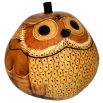 Shop for Gourd Boxes